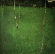 Gustav Klimt, Bauernhaus mit Birken von AKG  Images