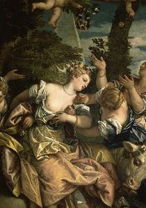 Veronese, Der Raub der Europa von AKG  Images