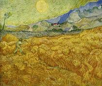 V.van Gogh, Die Ernte by AKG  Images