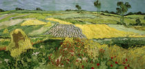 V.v.Gogh, Ebene von Auvers (Felder) von AKG  Images