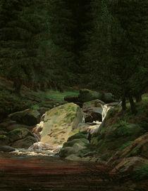 C.D.Friedrich, Wasserfall / um 1828 by AKG  Images