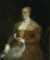 P.Veronese, Dame mit Reiher von AKG  Images