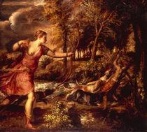 Tizian, Tod des Aktaeon von AKG  Images