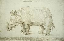 A.Duerer, Rhinozeros / Federzeichnung von AKG  Images
