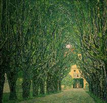 G.Klimt, Allee im Park von Schloss Kammer by AKG  Images