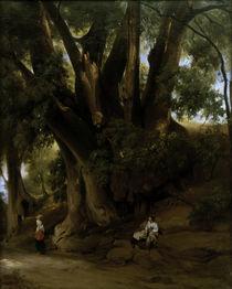A.Feuerbach, Italienische Baumlandschaft von AKG  Images