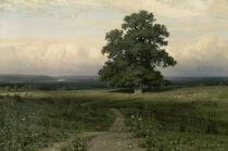 Schischkin/Es stand auf oeder Heide..1883 by AKG  Images