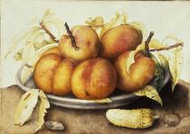 G.Garzoni, Schale mit Pfirsichen von AKG  Images