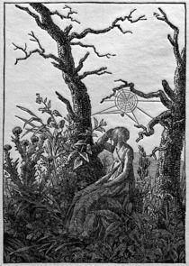 C.D.Friedrich, Frau mit Spinnennetz by AKG  Images