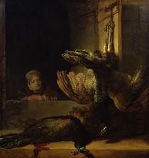 Rembrandt, Stillleben mit 2 toten Pfauen von AKG  Images