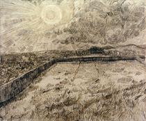 V.van Gogh, Felder und Oelbaeume von AKG  Images