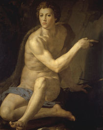 Bronzino, Johannes der Taeufer by AKG  Images