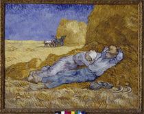 Van Gogh /Mittagsrast (nach Millet)/1890 von AKG  Images