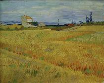 V.v.Gogh, Weizenfeld von AKG  Images