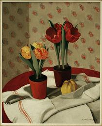 F.Vallotton, Stilleben: ... Tulpen von AKG  Images