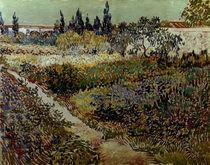 V.van Gogh, Bluehender Garten mit Pfad by AKG  Images