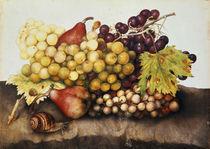 G.Garzoni, Stilleben mit Weintrauben von AKG  Images