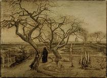 V.van Gogh, Garten im Winter von AKG  Images