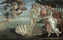 Botticelli, Geburt der Venus von AKG  Images