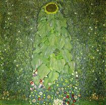 Gustav Klimt, Die Sonnenblume by AKG  Images