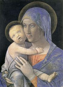 Andrea Mantegna, Maria mit Kind von AKG  Images
