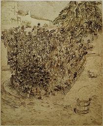 V.van Gogh, Garten einer Badeanstalt von AKG  Images