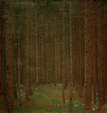 Gustav Klimt, Tannenwald I von AKG  Images