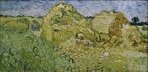 V.v.Gogh, Feld mit Heuschobern von AKG  Images