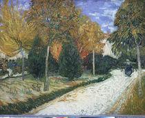 Van Gogh/Weg im Park von Arles/ 1888 by AKG  Images