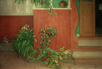 Carl Larsson, Suzanne auf der Veranda von AKG  Images