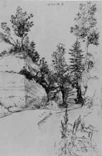 A.Duerer, Ausgang aus Steinbruch von AKG  Images