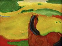 F.Marc, Pferd in der Landschaft von AKG  Images