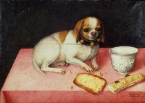 G.Garzoni, Huendchen mit Brotschnitte von AKG  Images