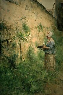 C.Larsson, Die alte Mauer von AKG  Images