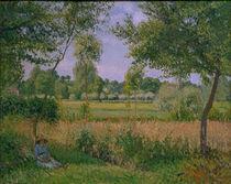 C.Pissarro, Morgen, Sonnenlicht, Eragny by AKG  Images