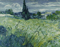 Van Gogh/ Gruenes Weizenfeld mit Zypresse von AKG  Images
