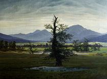 C.D.Friedrich, Einsamer Baum by AKG  Images