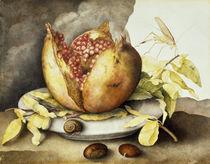 G.Garzoni, Teller mit Granatapfel by AKG  Images