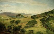 J.E.Millais, The Fringe of the Moor von AKG  Images