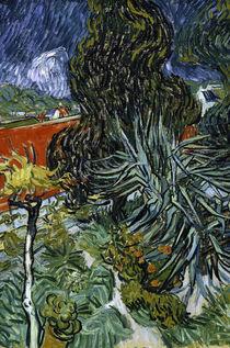 Van Gogh/ Garten von Doktor Gachet/ 1890 von AKG  Images