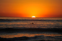 Californian Sunset 1 by dayle ann  clavin
