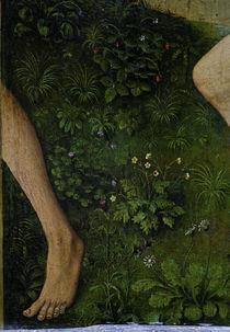 R.v.d. Weyden, Bluehende Pflanzen von AKG  Images