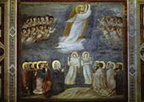 Giotto, Christi Himmelfahrt by AKG  Images