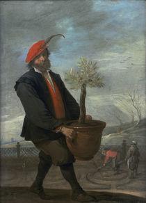 D.Teniers,Ein Orangengaertner (Fruehling) von AKG  Images