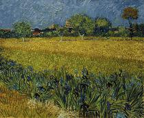 V.v.Gogh, Blick auf Arles mit Irisblueten by AKG  Images