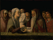 Bellini, Darstellung Jesu im Tempel by AKG  Images