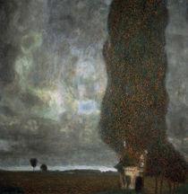 Gustav Klimt, Die Grosse Pappel II by AKG  Images