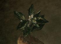 J.B.S.Chardin, Stilleben mit Brioche,Det von AKG  Images
