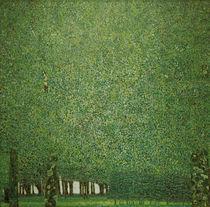 Gustav Klimt, Park by AKG  Images