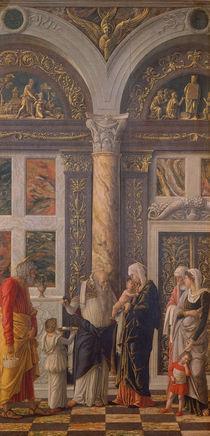 A.Mantegna, Beschneidung Jesu von AKG  Images